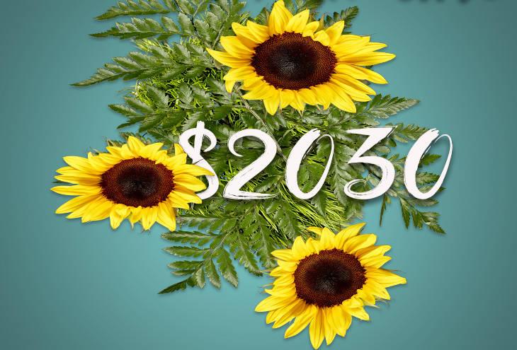 June 2015 Monthly Debt Payoff Report | Broke on Purpose| www.livebrokeonpurpose.com