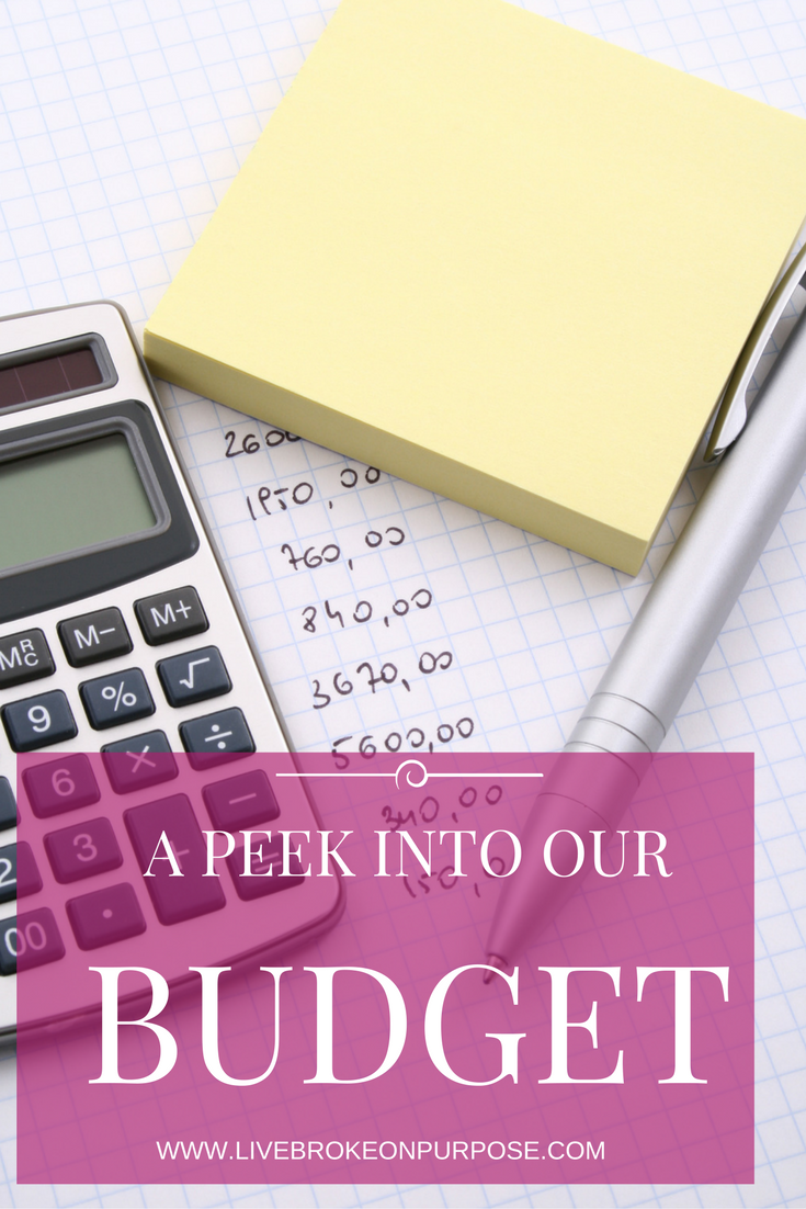 A Peek Into the Broke on Purpose Monthly Budget